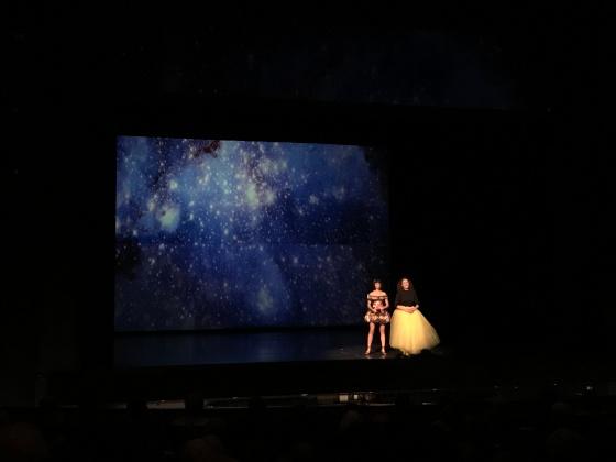 Carmen Steinert Maike Schroeter Das Knurren der Milchstraße
